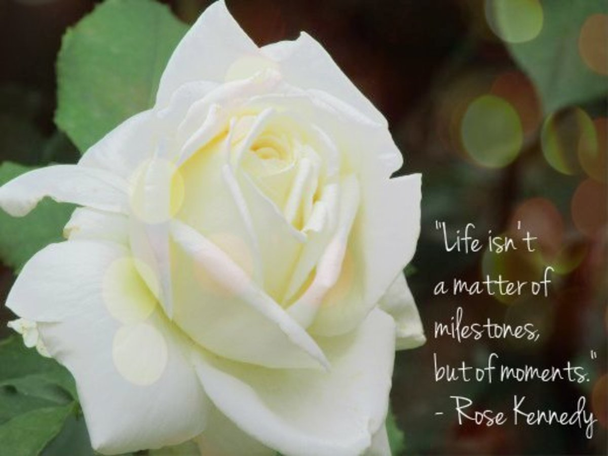 """Life isn't a matter of milestones, but of moments."" - Rose Kennedy, American philanthropist and socialite"