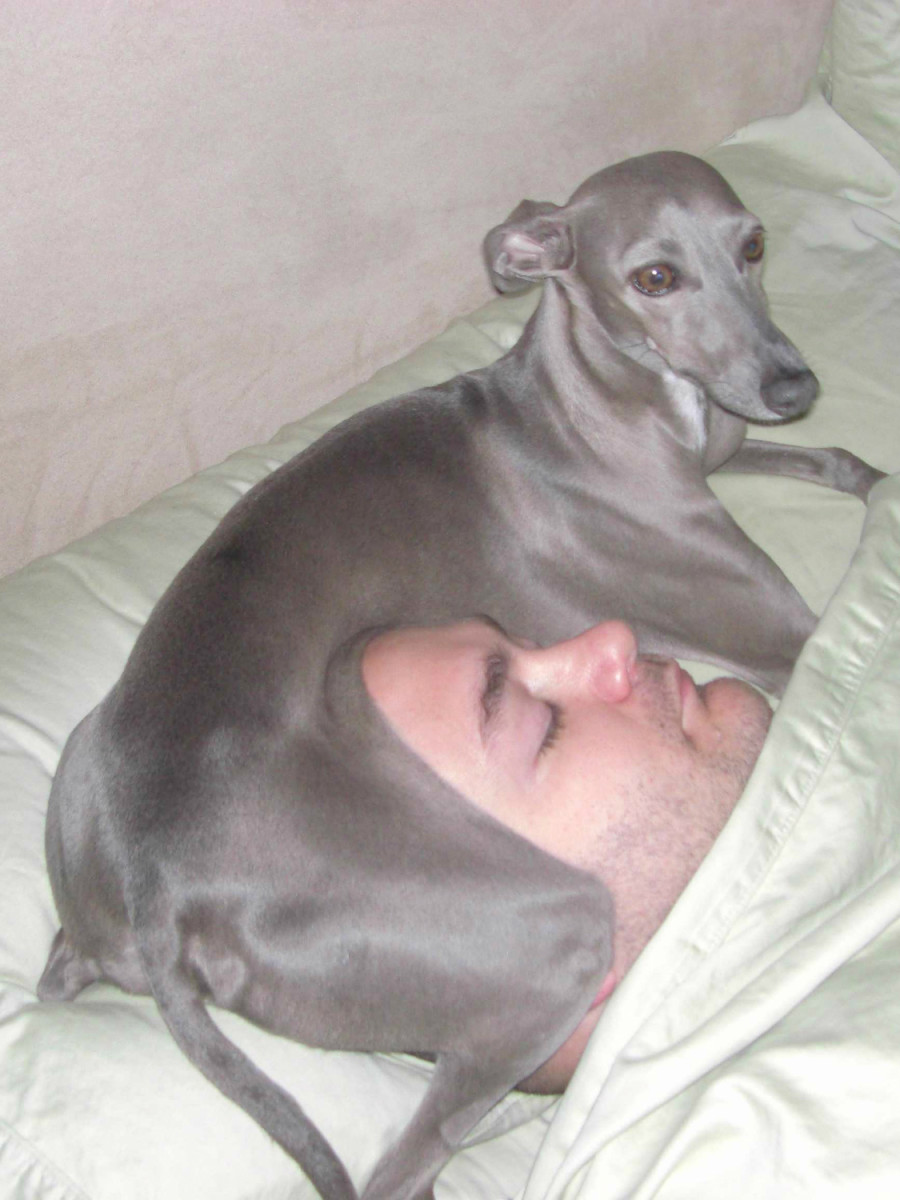 He who sleeps with dogs ... wakes up warm and feeling loved.