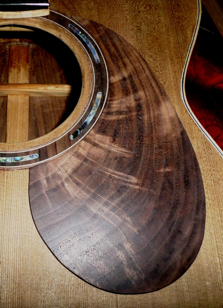 How To Build An Acoustic Guitar With Photos Spinditty