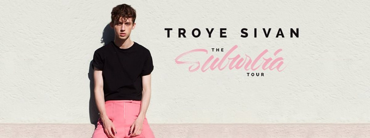 """You should totally like Troye Sivan on Facebook!  He'll drive you """"WILD""""!!!"""