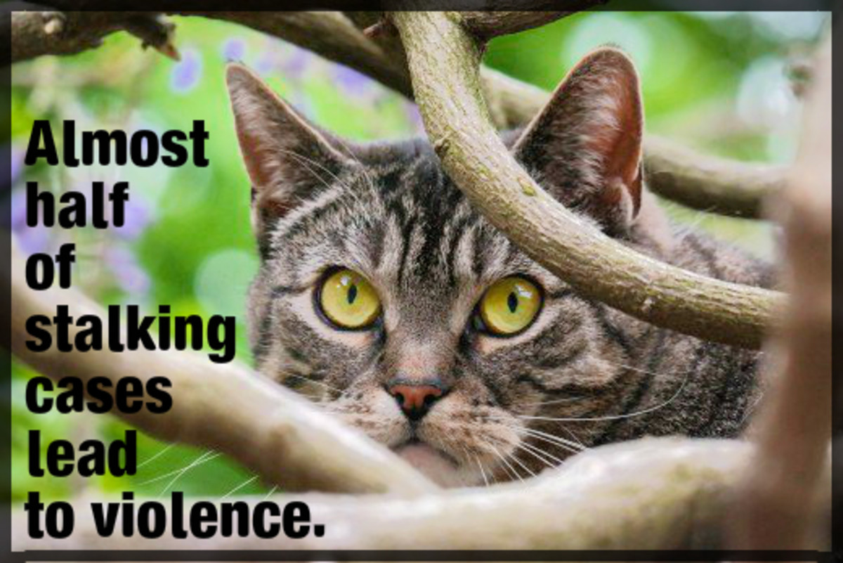 Take stalking seriously by alerting authorities.  Almost half of stalking cases lead to violence.
