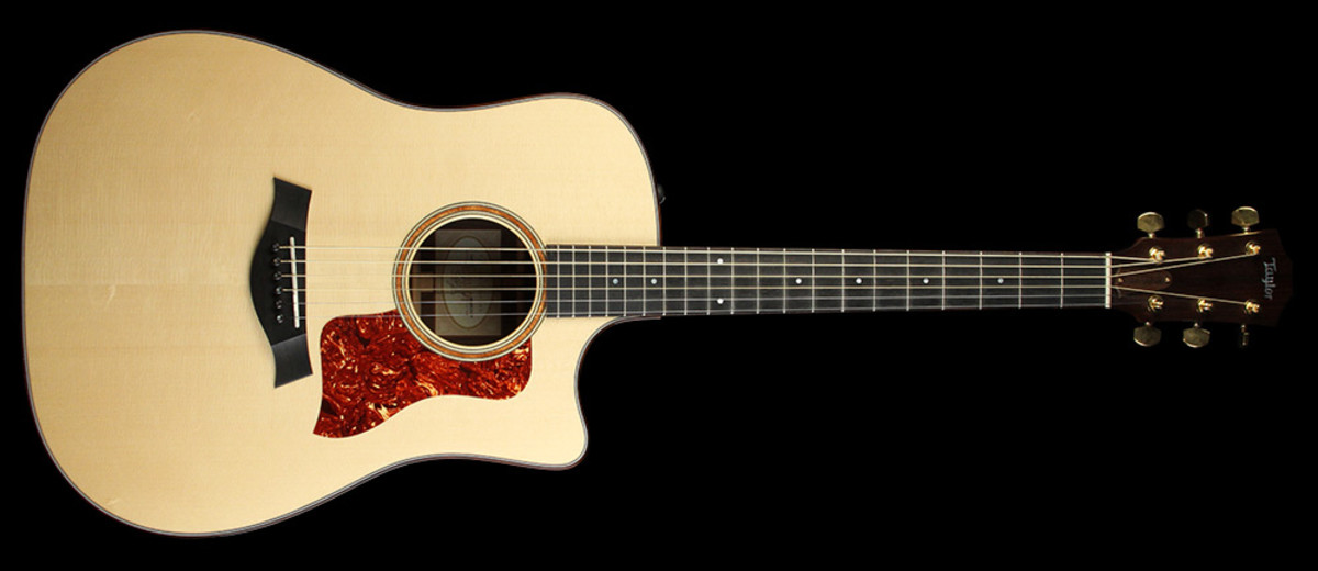 5-best-madagascar-rosewood-dreadnought-gutars-for-serious-amateurs-and-professionals