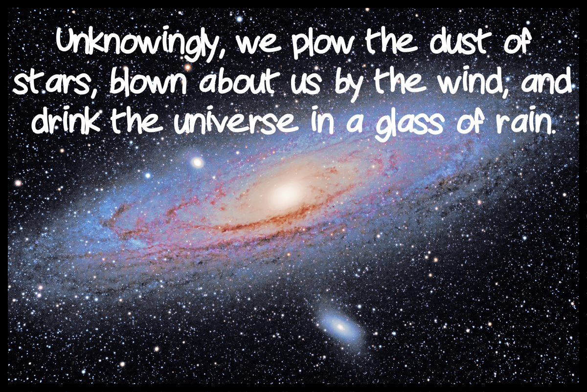 """Unknowingly, we plow the dust of stars, blown about us by the wind, and drink the universe in a glass of rain."" - Ihab Hassan, Arab American writer"
