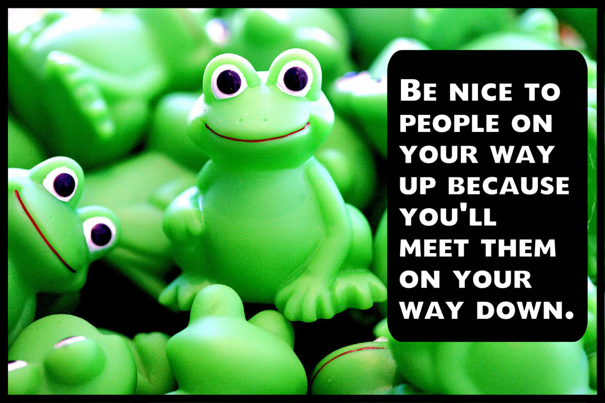 """""""Be nice to people on your way up because you'll meet them on your way down."""" Wilson Mizner, American playwright"""
