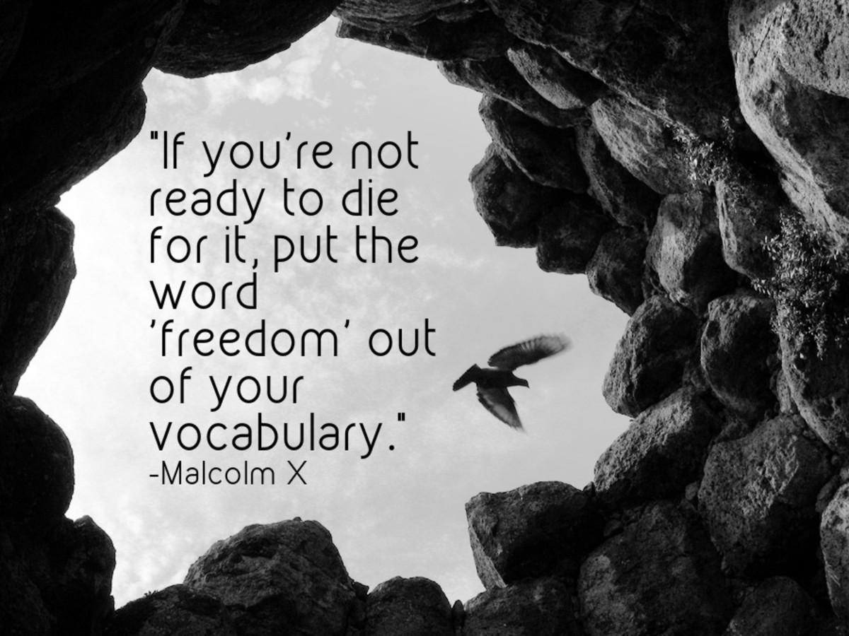 """If you're not ready to die for it, put the word 'freedom' out of your vocabulary."" - Malcolm X, civil rights activist"