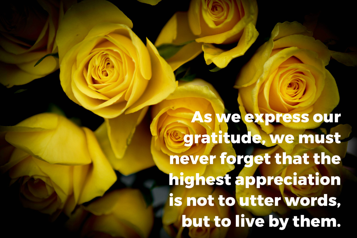 """""""As we express our gratitude, we must never forget that the highest appreciation is not to utter words, but to live by them."""" - John F. Kennedy, 35th U.S. President"""