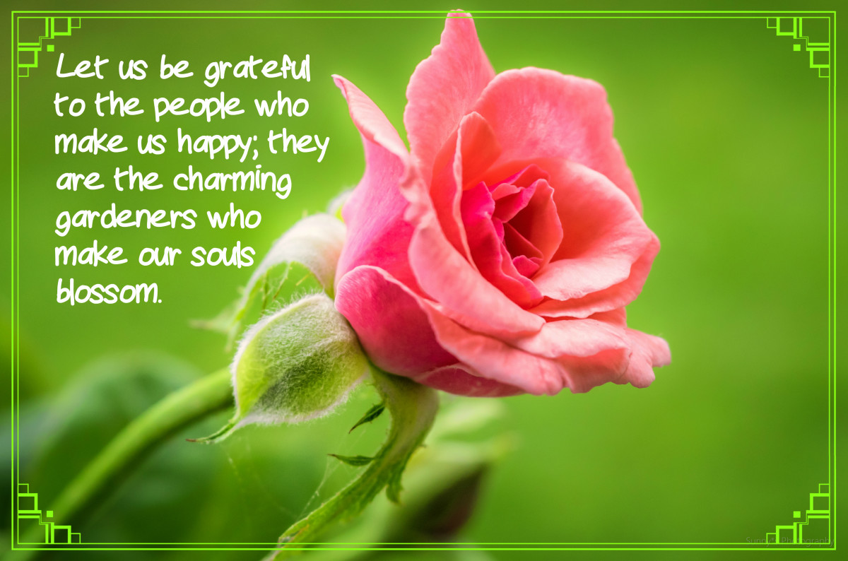"""""""Let us be grateful to the people who make us happy; they are the charming gardeners who make our souls blossom."""" - Marcel Proust, French novelist"""