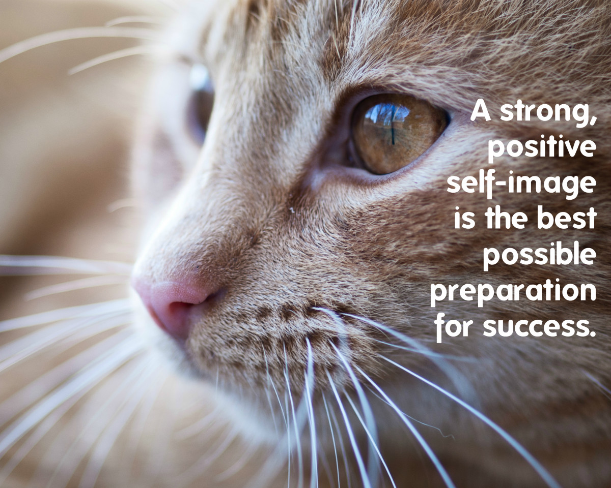 """A strong, positive self-image is the best possible preparation for success. Dr. Joyce Brothers, American psychologist"