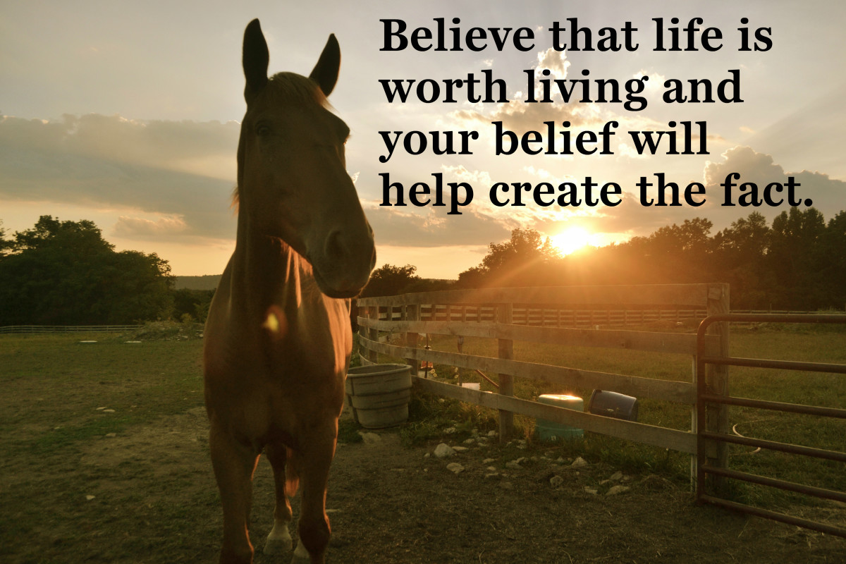 """Believe that life is worth living and your belief will help create the fact."" William James, Father of American psychology"
