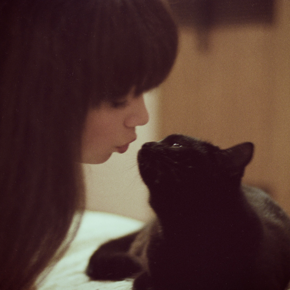 I'm not alone in kissing my cat.  See?  They're good kissers.