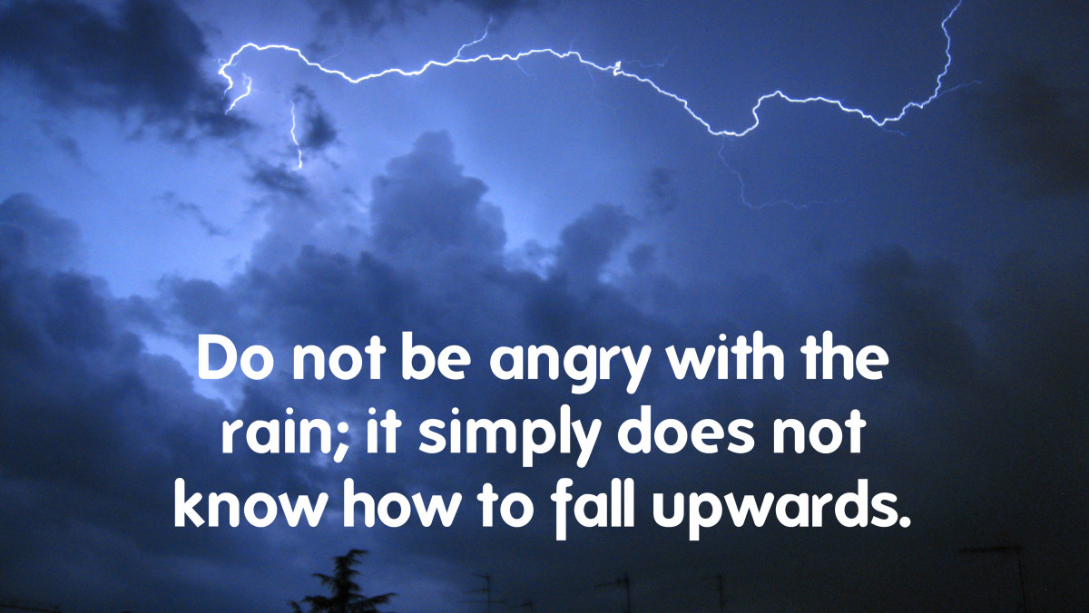 """Don't be angry with the rain; it simply does not know how to fall upwards."" - Vladimir Nabokov, Russian-American novelist"