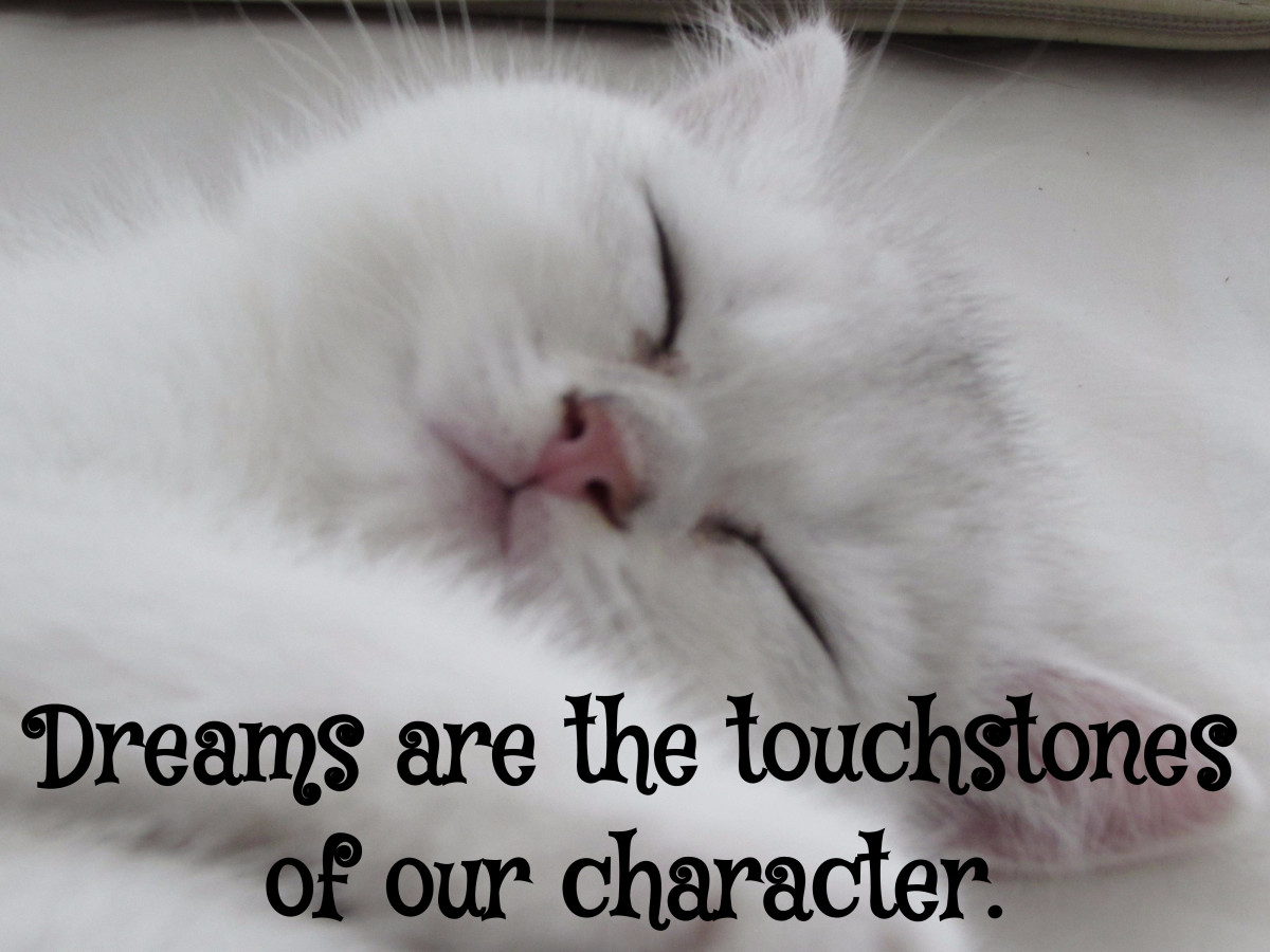 """Dreams are the touchstones of our character."" - Henry David Thoreau, American writer"