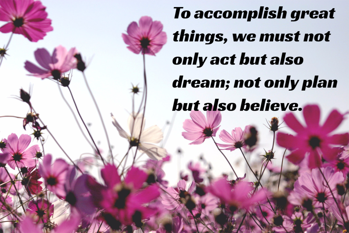 """To accomplish great things, we must not only act, but also dream; not only plan, but also believe."" - Anatole France, French writer"