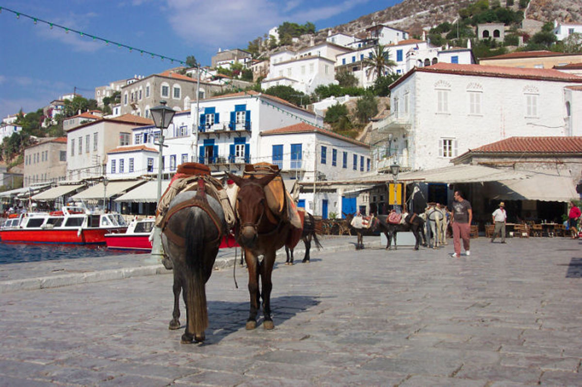Donkeys at the Hydra seafront, photo from wikipedia