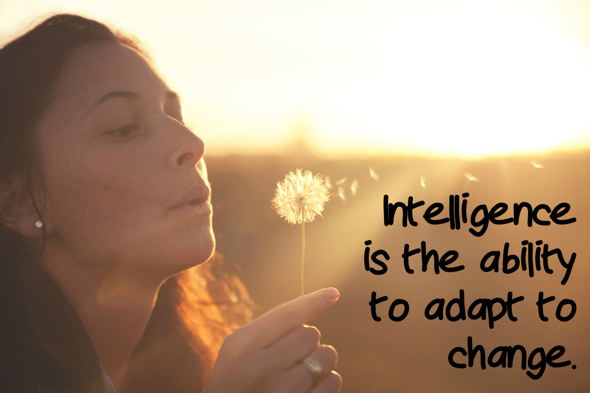 """Intelligence is the ability to adapt to change."" - Stephen Hawking, English theoretical physicist"