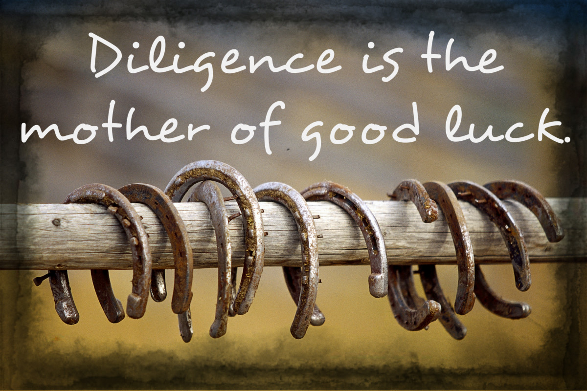 """Diligence is the mother of good luck."" - Benjamin Franklin, inventor and American Founding Father"
