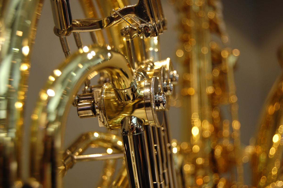 "Brass instruments, also referred to as ""lip-vibrated instruments,"" include valved brass  instruments such as the horn, tuba, and trumpet, and slide brass instruments like the trombone."