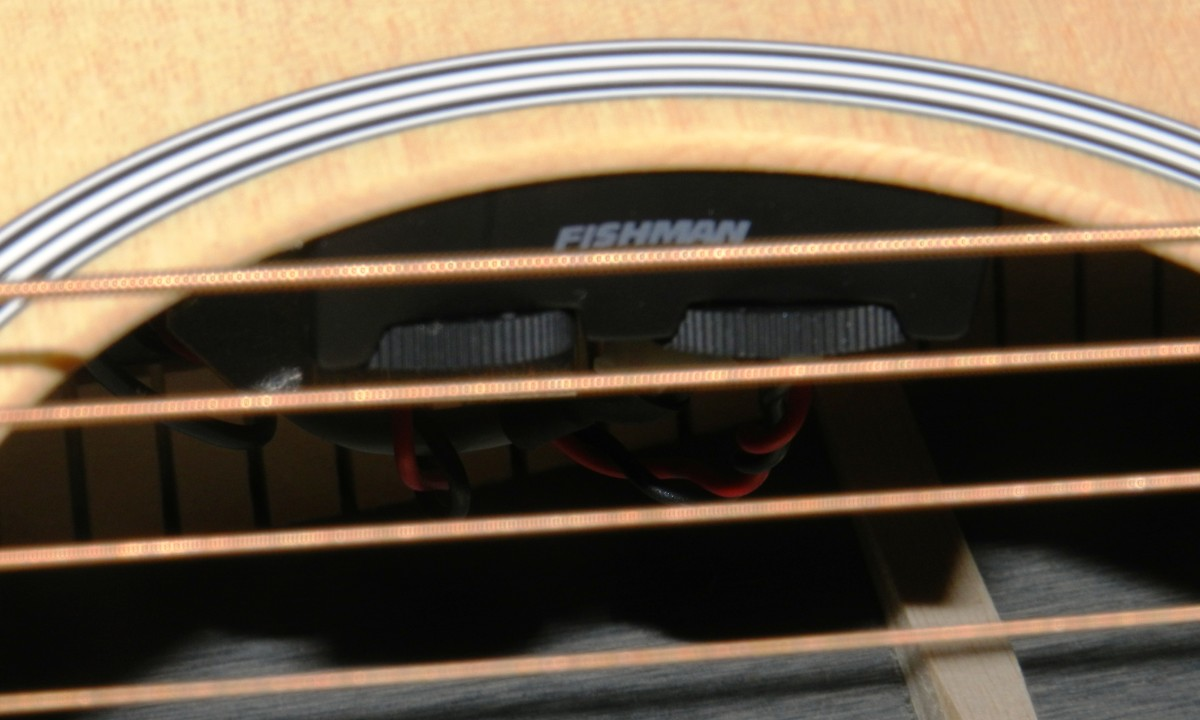 The Fishman electronics tuck neatly away in the soundhole.