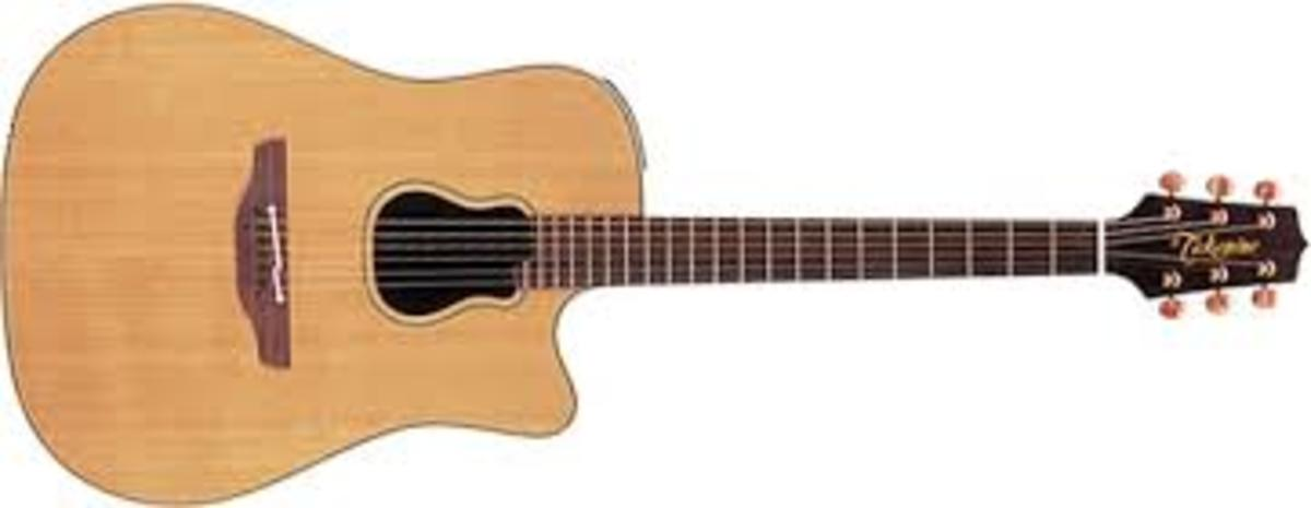 Takamine Garth Brooks Signature guitar.