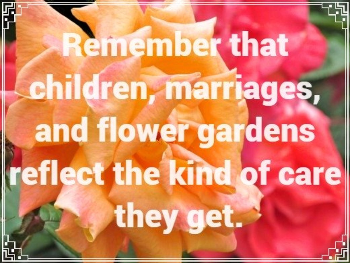 """Remember that children, marriages, and flower garden reflect the kind of care they get."" - H. Jackson Brown Jr., American author"