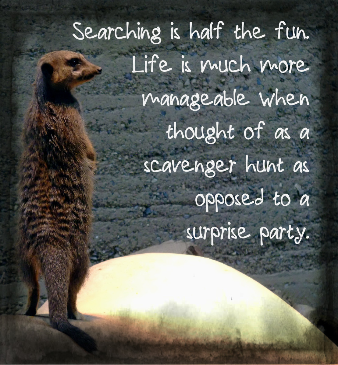 """Searching is half the fun. Life is much more manageable when thought of as a scavenger hunt as opposed to a surprise party."" - Jimmy Buffett, American singer"