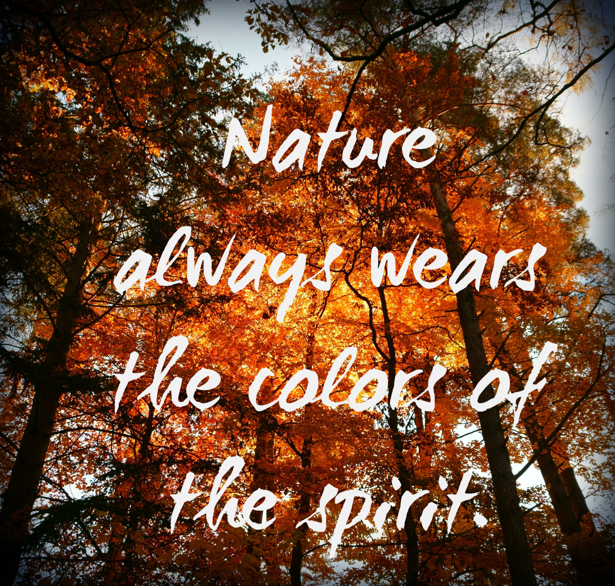 """Nature always wears the colors of the spirit."" - Ralph Waldo Emerson, American writer"