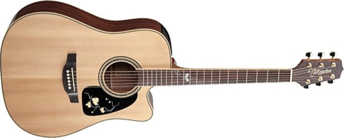 Takamine's 50th anniversary guitar.
