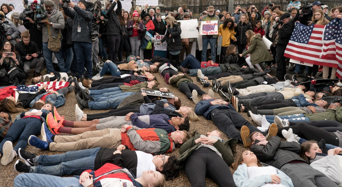 After 17 classmates lost their lives to a gunman armed with a semi-automatic rifle, students at Marjory Stoneman Douglas High School in Parkland, Florida, spoke out against the powerful NRA gun lobby and advocated for changes to gun laws.