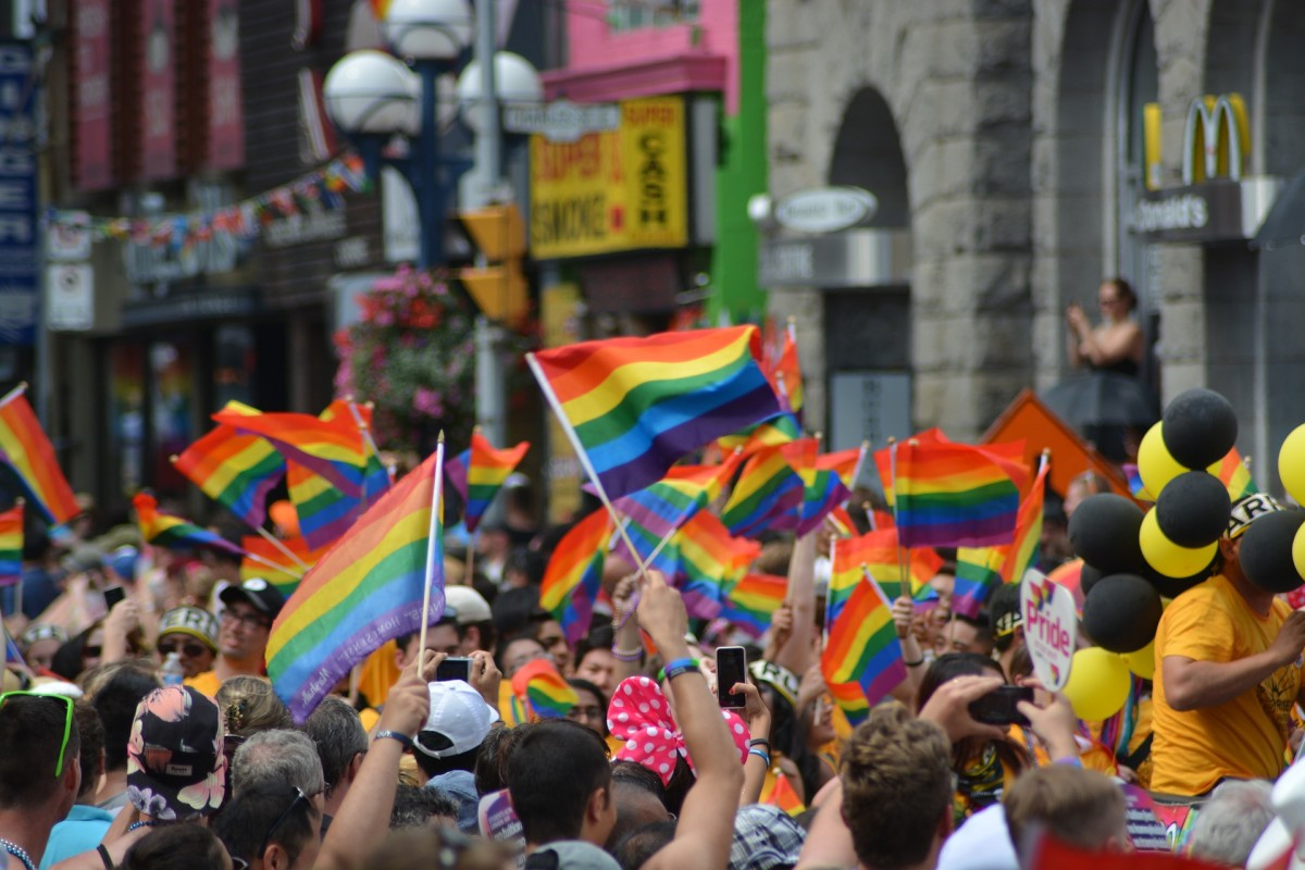 Members of the LGBT community advocated for transgender rights and for basic civil rights in employment and housing.  Marriage rights was also a key platform issue prior to the legalization of same sex marriage in all 50 states.