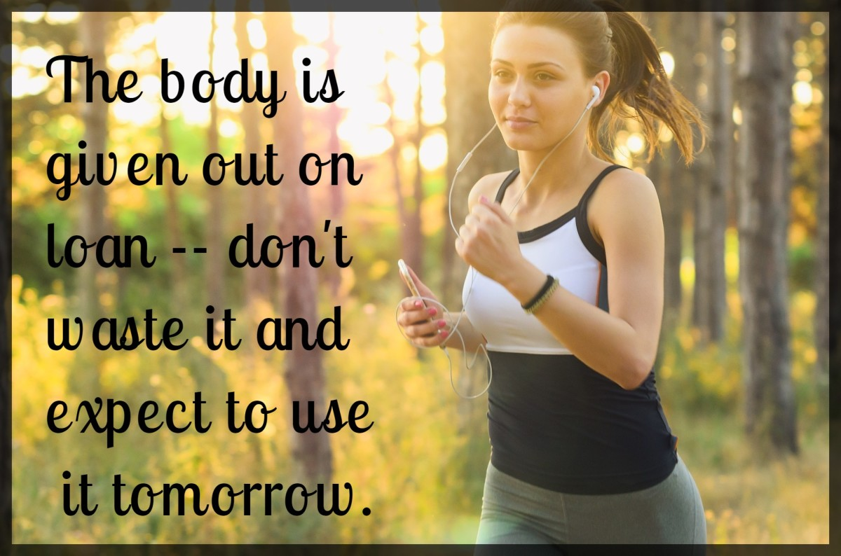 """The body is given out on loan -- do not waste it and expect to use it tomorrow."" - Carl Shapiro, American businessman"