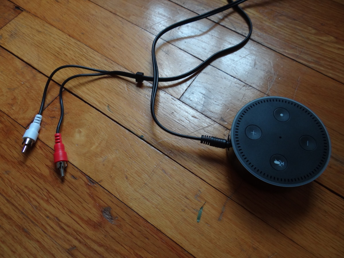 "The Stereo ""Y"" Adapter Cable is connected to the Echo Dot using the 3.5mm side of the cable."
