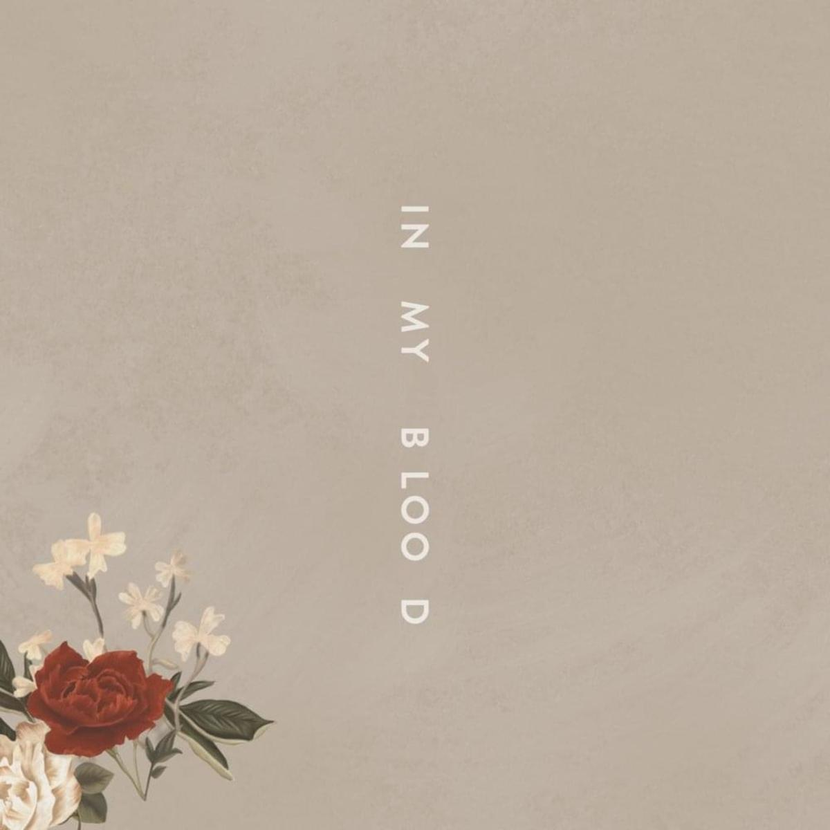 "Shawn Mendes - ""In My Blood"""