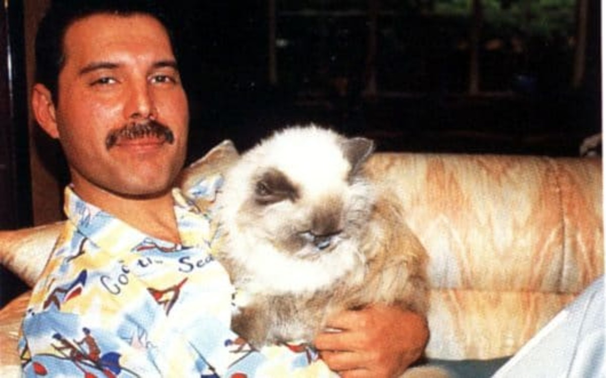 Freddie with his cherished furbaby, Tiffany.