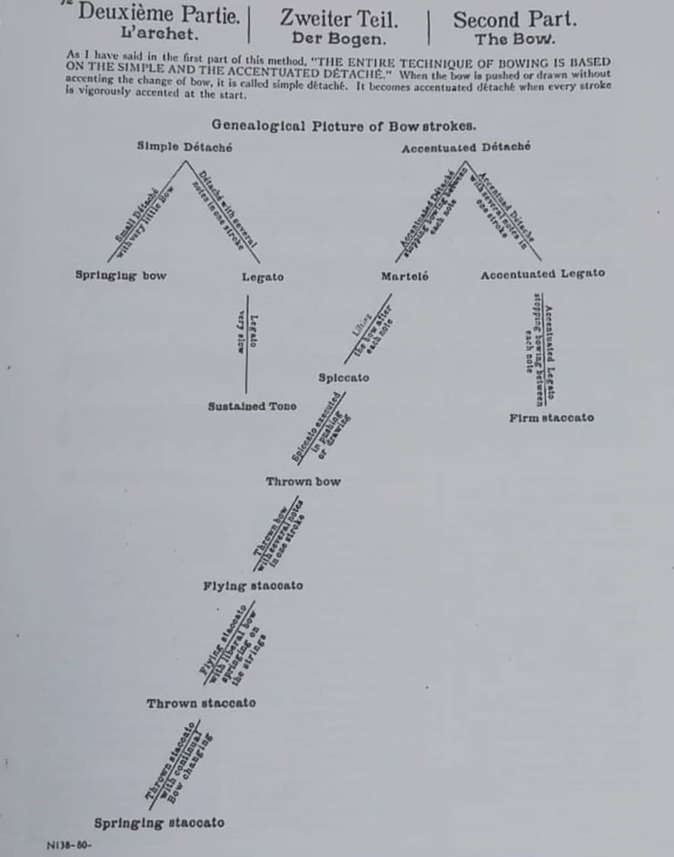 Genealogical Picture of Bow Strokes