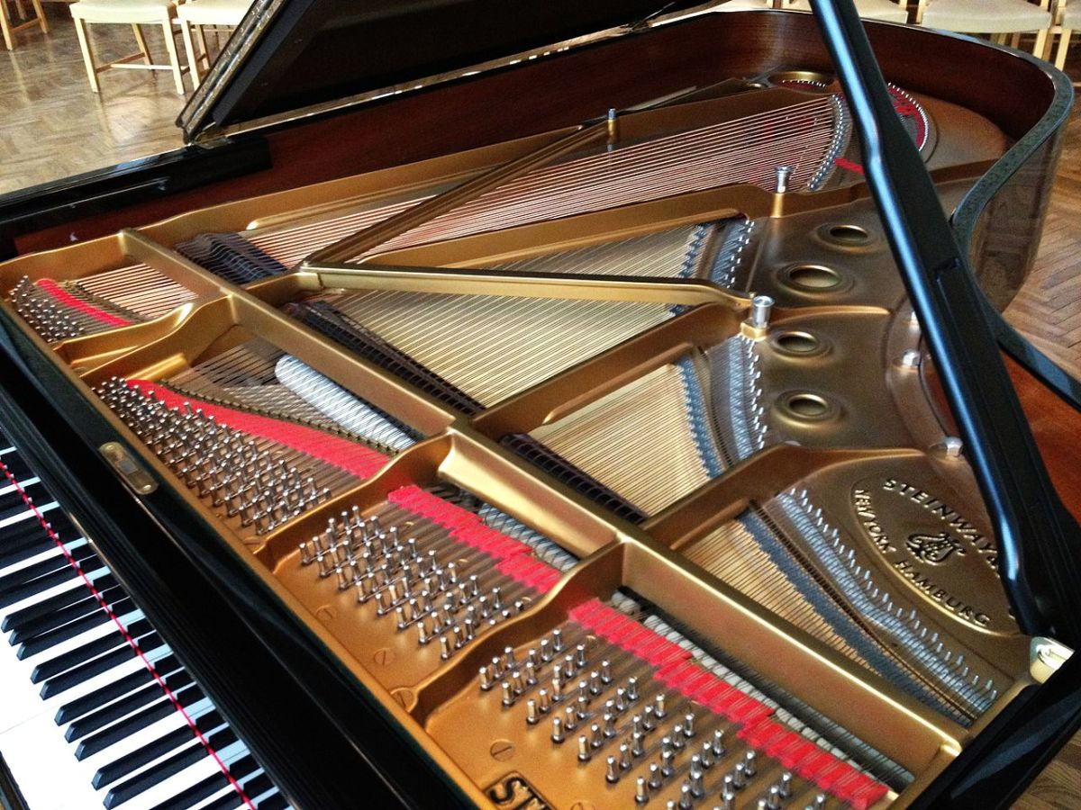 The inside of a grand piano.