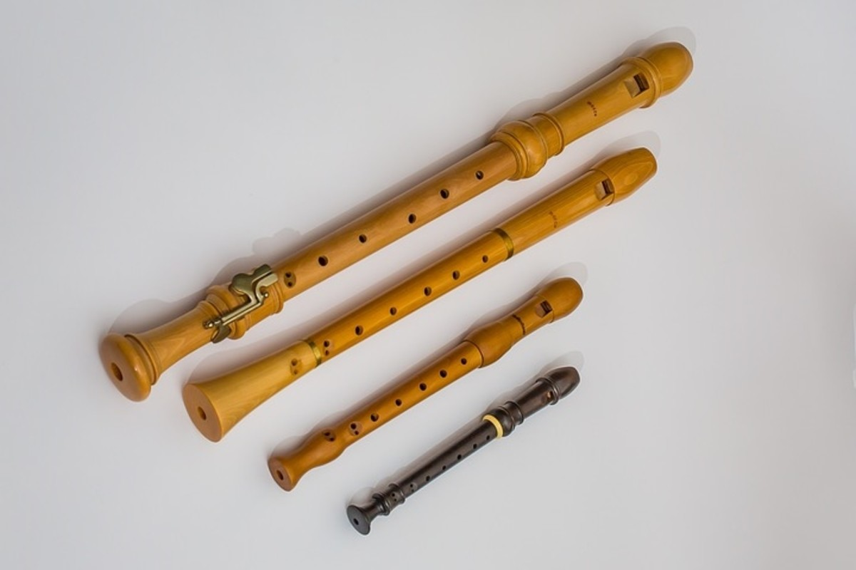 Recorders of different types