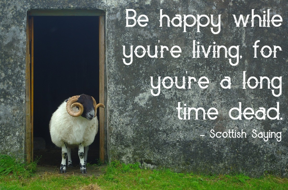 """Be happy while you're living, for you're a long time dead."" - Scottish saying"
