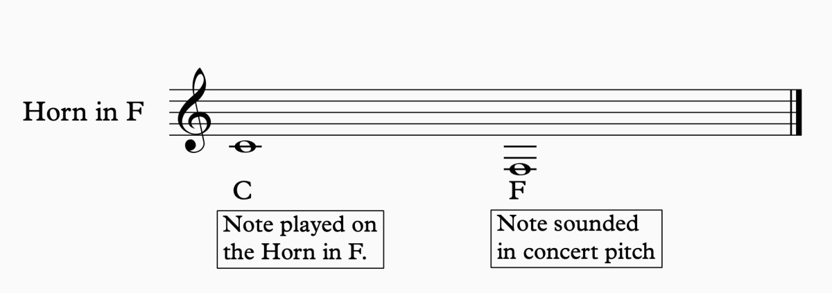 French Horn in F Transposition.