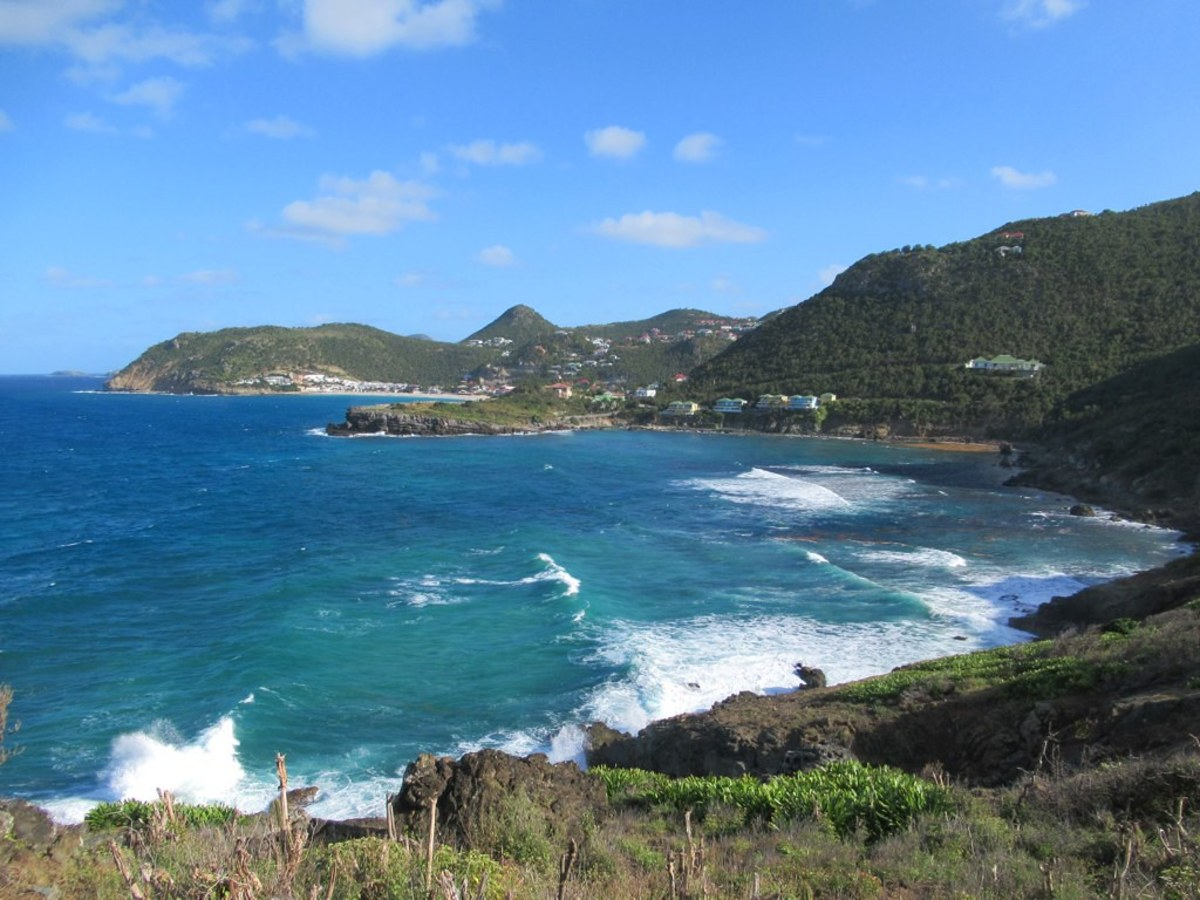 caribbean-winds