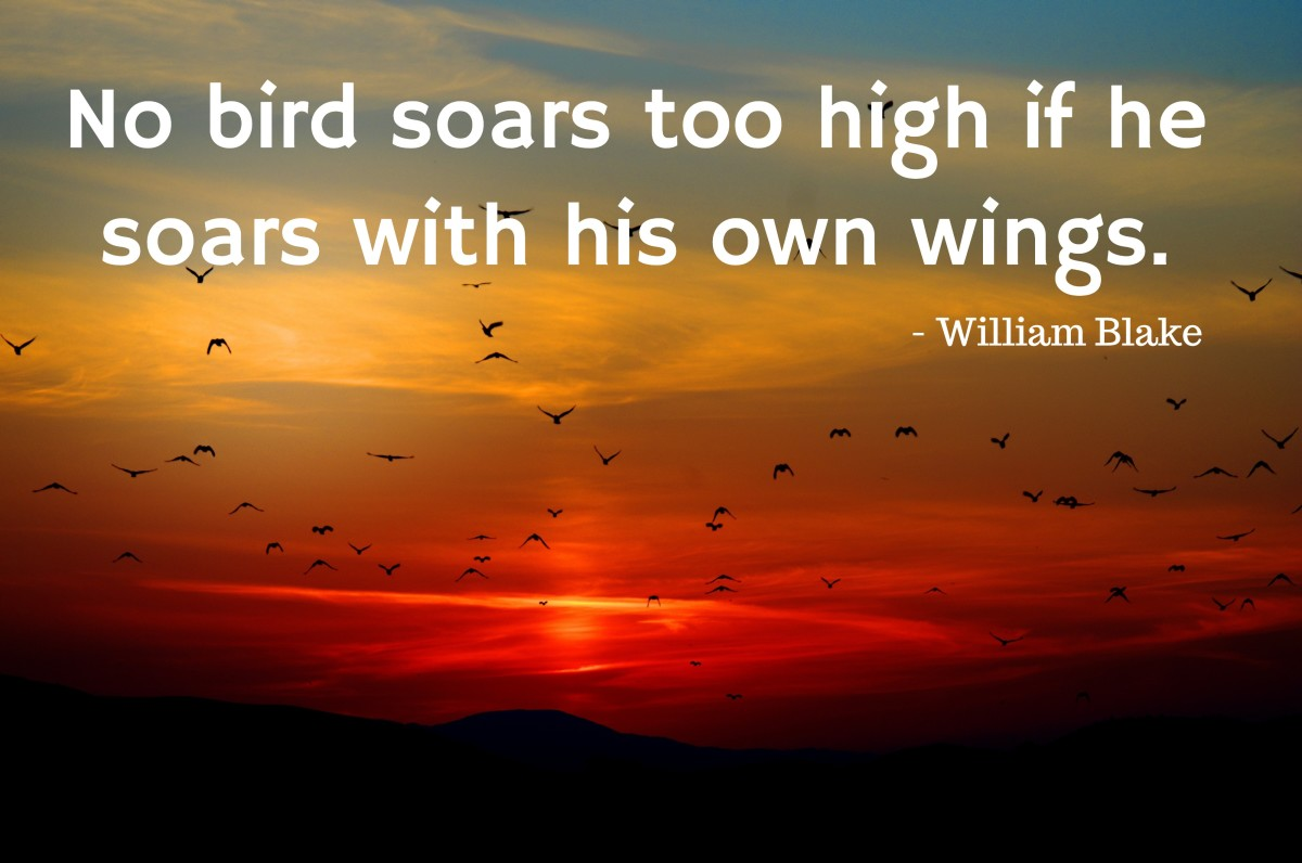 """No bird soars too high if he soars with his own wings."" - William Blake, English Romantic poet"