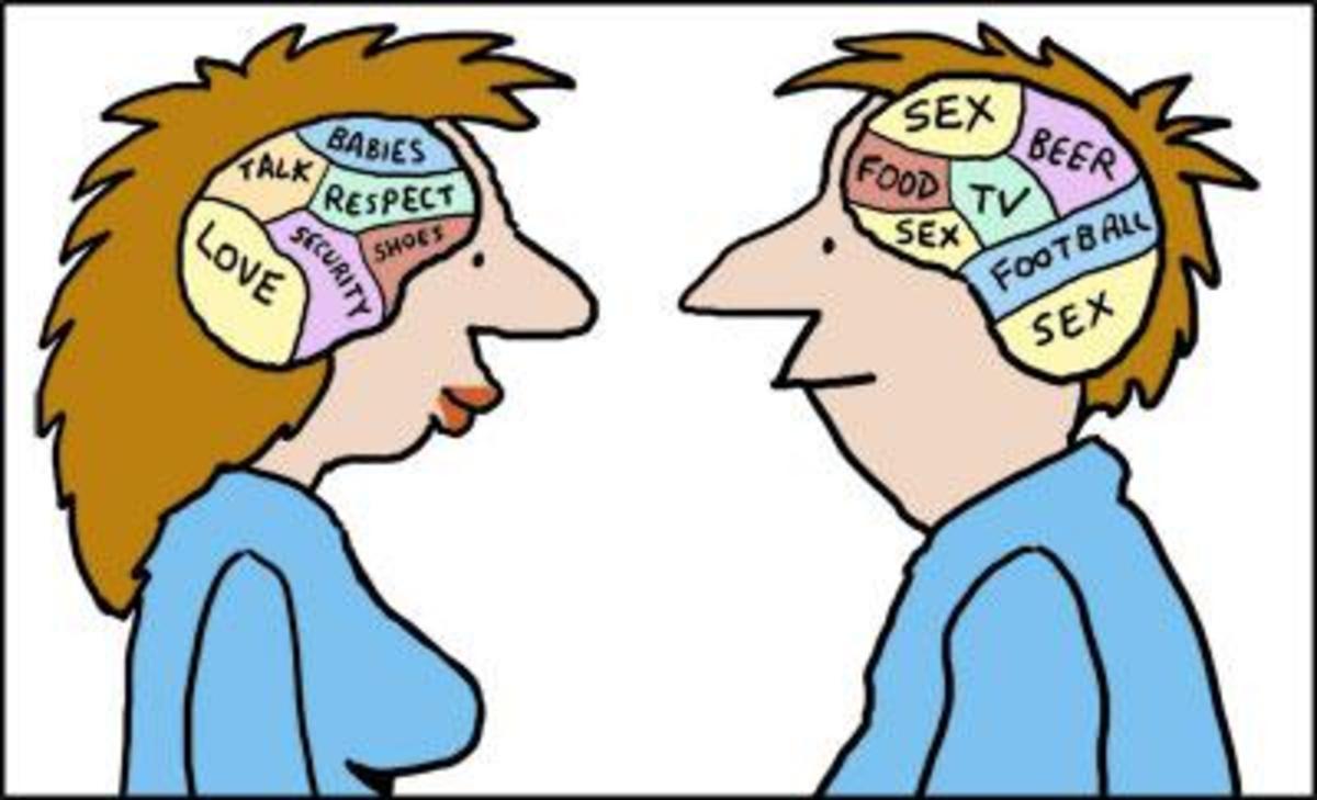 gender-differences-in-brain-development