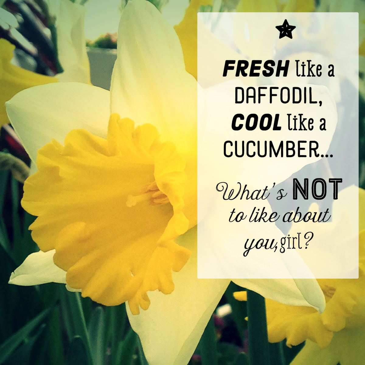 An original poem that says 'I like you': Fresh like a daffodil, cool like a cucumber—what's not to like about you, girl?