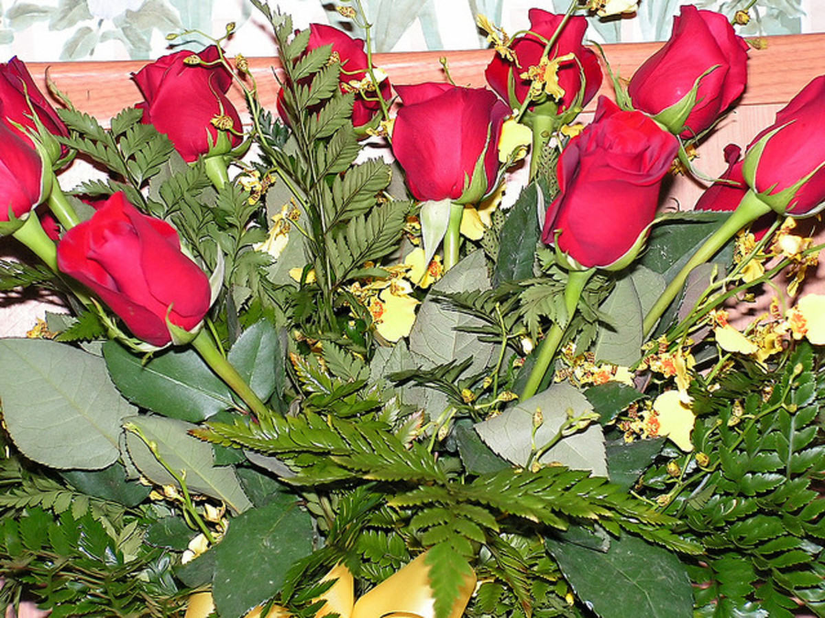 Eleven roses says to the recipient that she is deeply and truly loved by the giver. This is a great number for married couples!