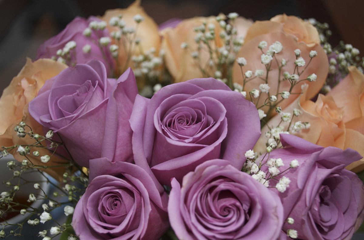 Lavender roses (shown here in a bouquet with peach roses) represent enchantment with your lover.