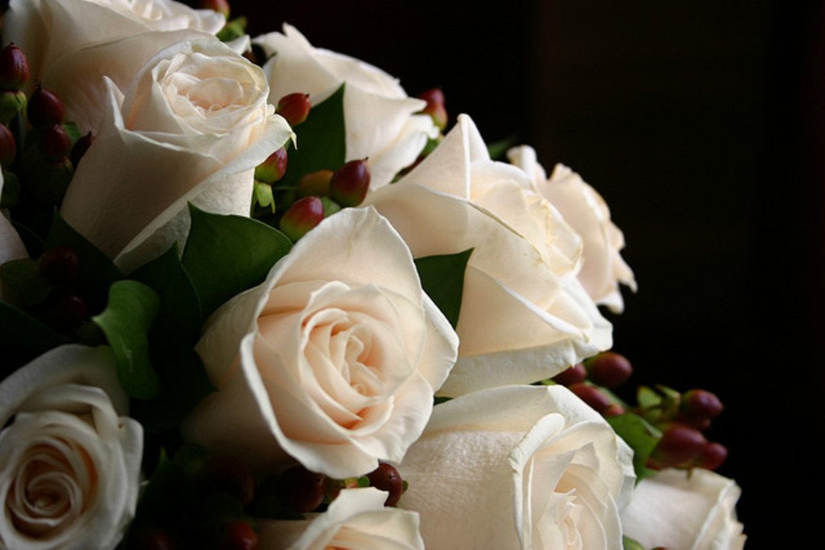 "White roses represent purity and innocence. They are a great way to tell your sweetheart ""I'll wait for you."""