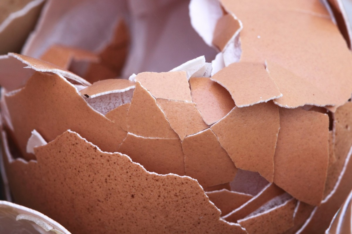 Does being around your partner make you feel like you are walking on eggshells? That could be a sign of a bad relationship.