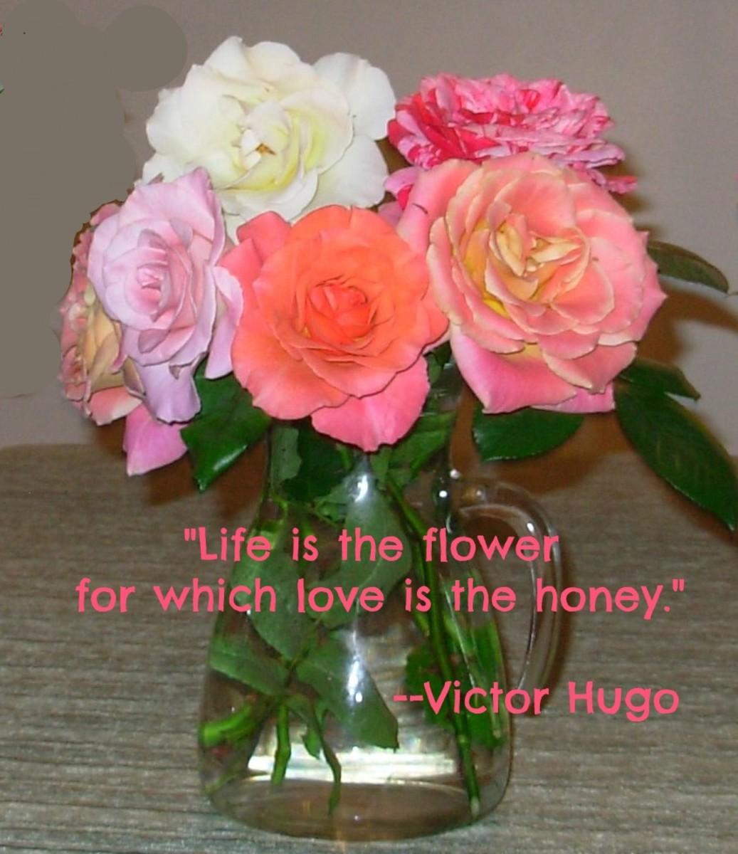 Love adds sweetness to life.