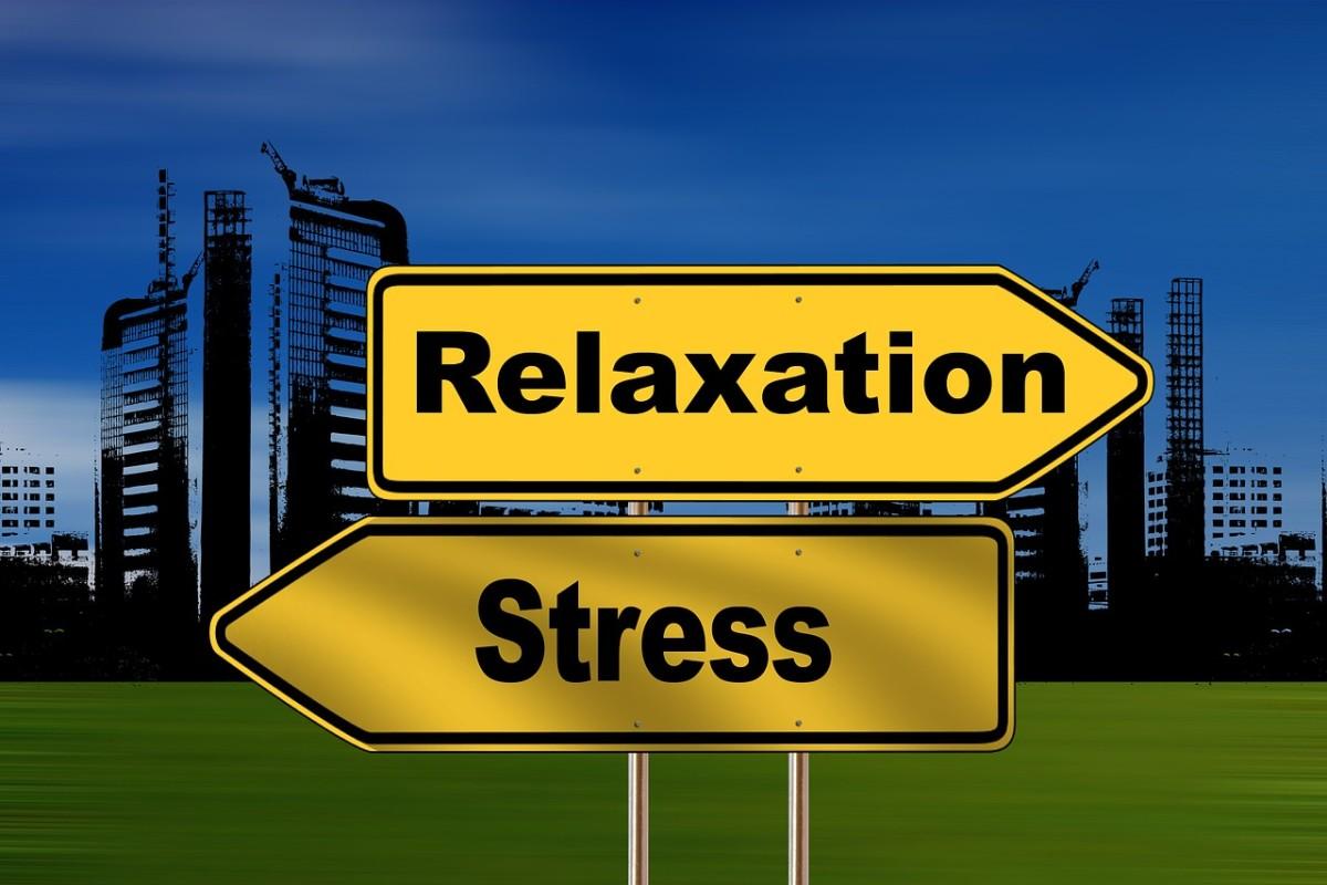 Feeling too stressed?