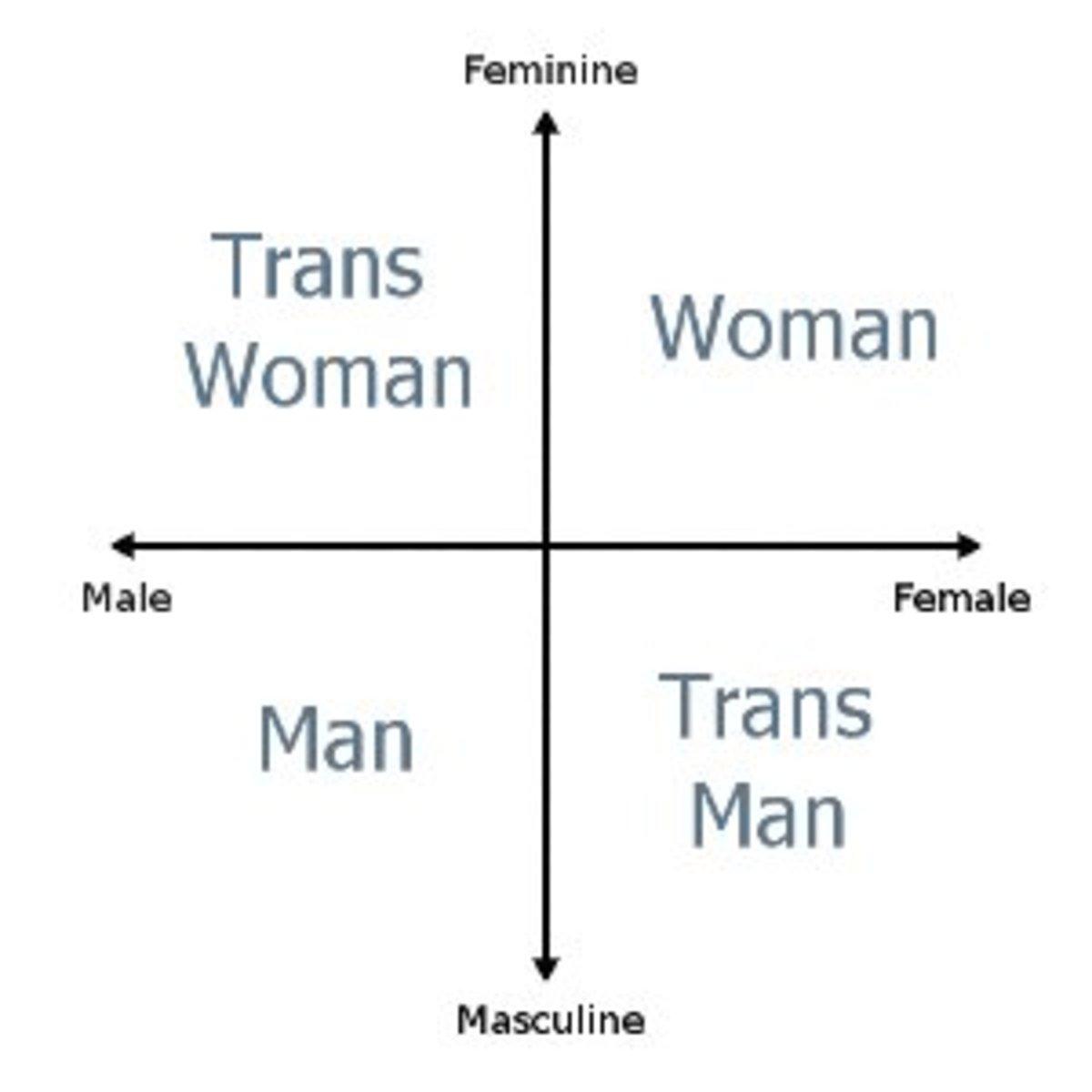 modeling-sexual-identities-intersex-transgender-gender-binary