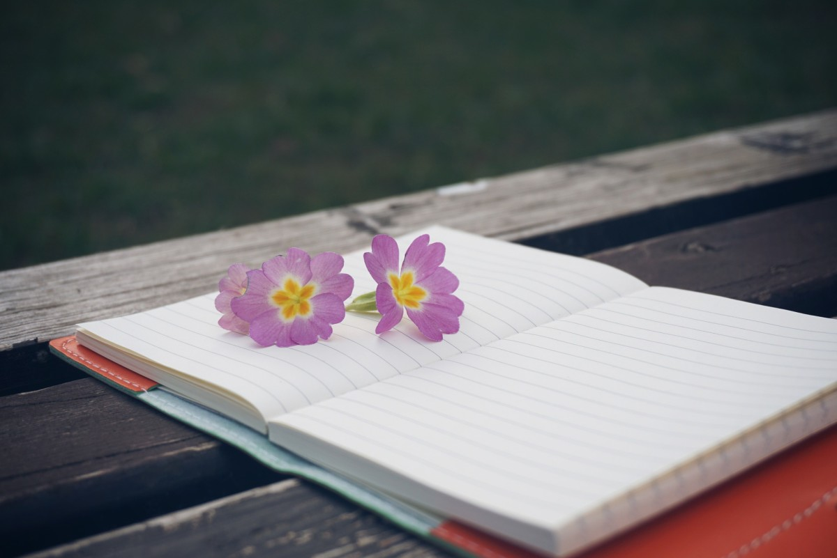 Press flowers that your lover gave you in between the pages of your romantic journal.